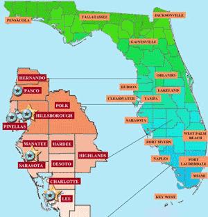 SEO Consultant in Sarasota County FL